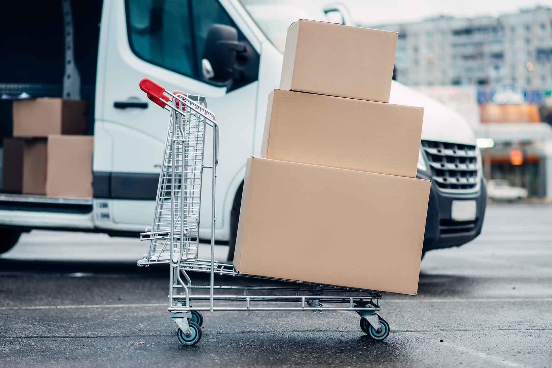 Explain the Role of Transport Logistics